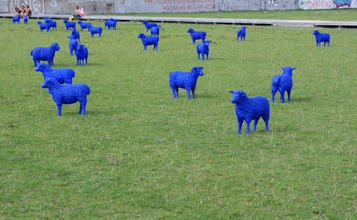 Blaue Schafe in Köpenick